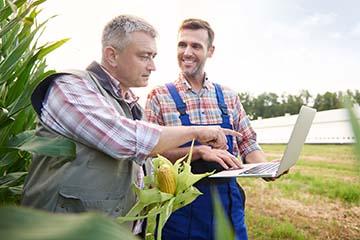 pq-formulacion-y-evaluacion-de-proyectos-de-inversion-agricolas